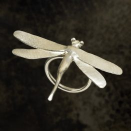 The Dragonfly Collection